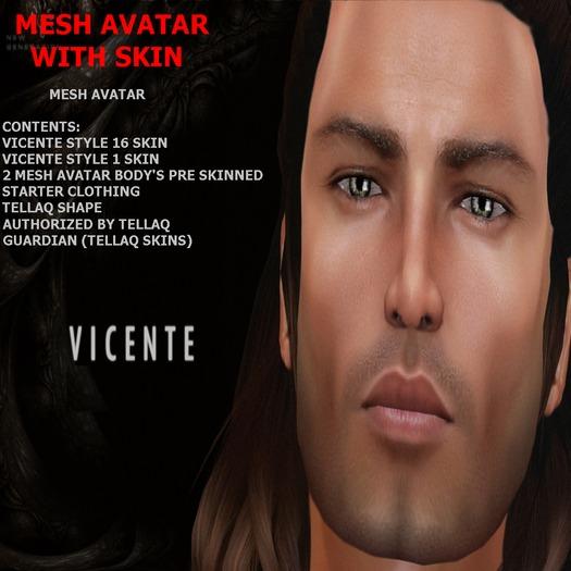 Tellaq Vicente 5.1 Mesh Avatar(BOX)