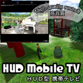 The contents are [10077] HUD Mobile TV [DEMO].
