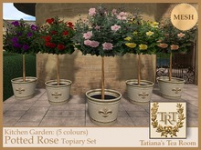 TTR-Kitchen Garden-Potted Rose Topiary Set (5 colours)