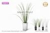 :neigeux: Mesh Plant No.1[V2]