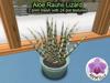 Mesh Plant Aloe Rauhii Lizard