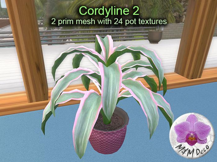 Mesh Plant Cordyline 2