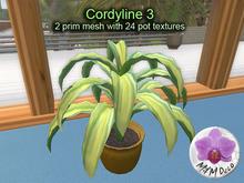 Mesh Plant Cordyline 3