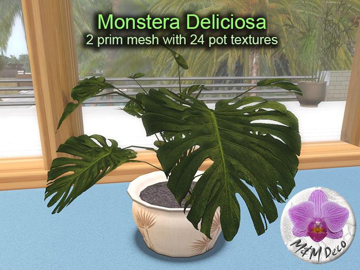 Mesh Plant Monstera Deliciosa