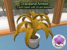 Mesh Plant Dracaena Amber