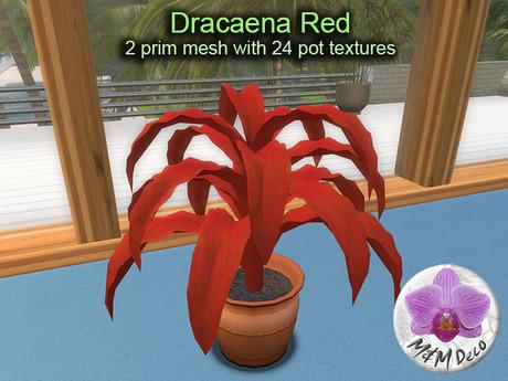 Mesh Plant Dracaena Red