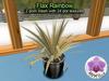 Mesh Plant Flax Rainbow