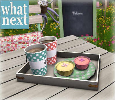 {what next) Garden Cafe Tray (boxed)