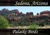 Atmo-AZ-Sedona - Palatki Birds 1:00