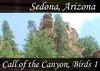 Atmo-AZ-Sedona - Call of the Canyon Birds 1 0:40