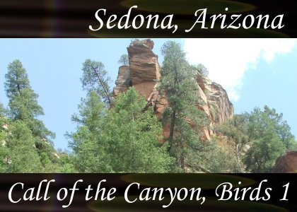 Atmo-AZ-Sedona - Call of the Canyon Birds 1 0:40