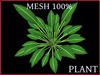 T-3D Creation [ PLANT No.5 ] MESH - Full Perm