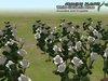 Growingplants white garden rose