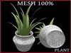 T-3D Creations [ PLANT No.6 ] MESH - Full Perm -