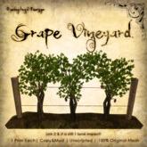 [DDD] Vineyard Grapes