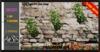 ALESTA << Mesh Ivy Plant 2 Full Perm