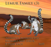 lemur  box