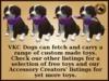Vkc elm puppy marketplace advert 07