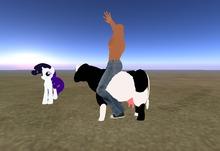 cow + MENU ANIMATION Dance Amazing, full perm