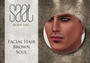 .::SAAL::. FACIAL HAIR BROWN SOUL