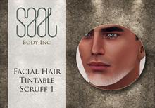 .::SAAL::. FACIAL HAIR TINTABLE SCRUFF 1