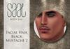 .::SAAL::. FACIAL HAIR BLACK MUSTACHE 2