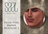 .::SAAL::. FACIAL HAIR BROWN MUSTACHE 2