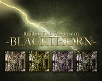 -B L A C K T H O R N- : Realistic Bark Texture Pack 01