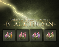 -B L A C K T H O R N- : Wildflower Texture Pack 01