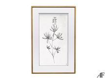 AF Botanical Print (Study #1)