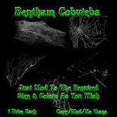 Bentham Cobwebs (boxed)