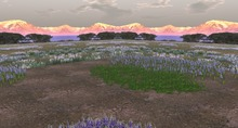 Textures Mountain with Flowerfield panorama view background privacy screen, seamless /alpha part transparent