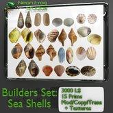 Sculpted Sea Shells Builders Set