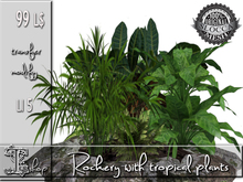 GARDEN PLANTS - Rockery  with tropical plants