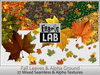 Fabric Lab Fall Leaves Alpha & Ground Cover Texture Set Fall Tree Leaf Alphas
