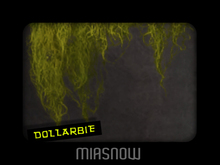 HANGING MOSS Dollarbie