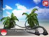 [Decor Depot] - Palm_1