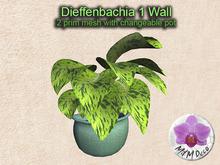 Mesh Plant Dieffenbachia 1 Wall