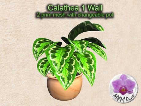 Mesh Plant Calathea 1 Wall