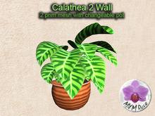 Mesh Plant Calathea 2 Wall