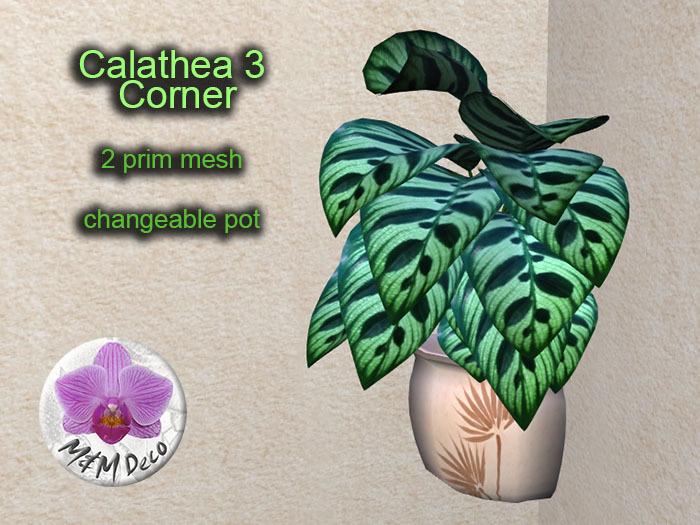Mesh Plant Calathea 3 Corner