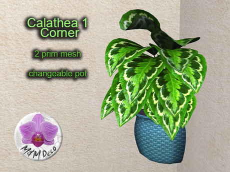 Mesh Plant Calathea 1 Corner