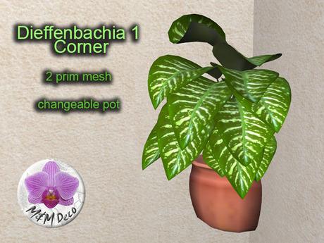 Mesh Plant Dieffenbachia 1 Corner