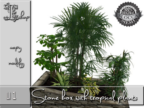 Garden plants - Stone box with tropical plants -1 LI