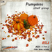 [Ginger Line] Small Pumpkins Group - 1 LI autumn or halloween decoration w/ ground leaves