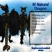 Furry Dragon - BlackNatural