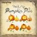Pumpkinpilejackmix