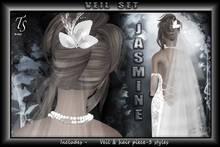TS-Bridal -Veil- jasmine