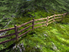 Fence   straight