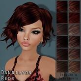 ~<Song>~ Dandilyon Hair - Reds